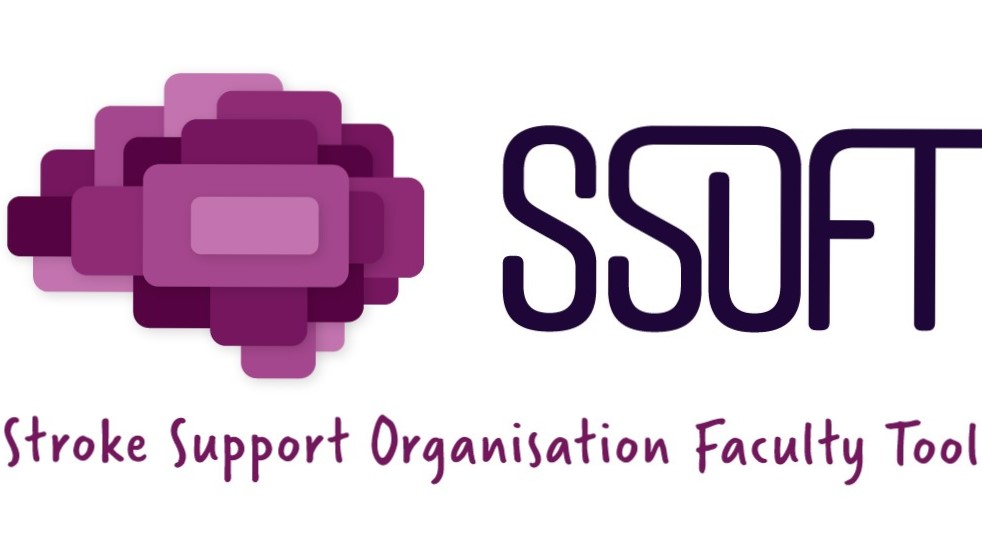 Stroke Support Organisation Faculty Tool