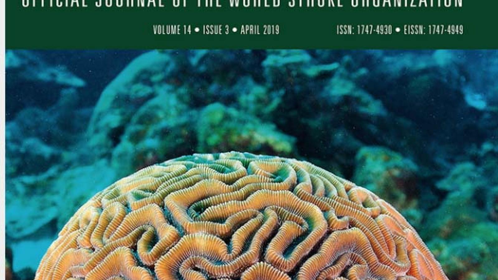Informal caregivers in stroke: life impact, support and psychological well-being - a Swedish Stroke Register (Riksstroke) study with Stefan Sennfalt